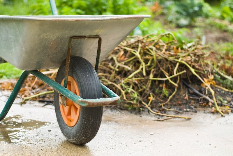 Yard Waste Collection Begins April 1