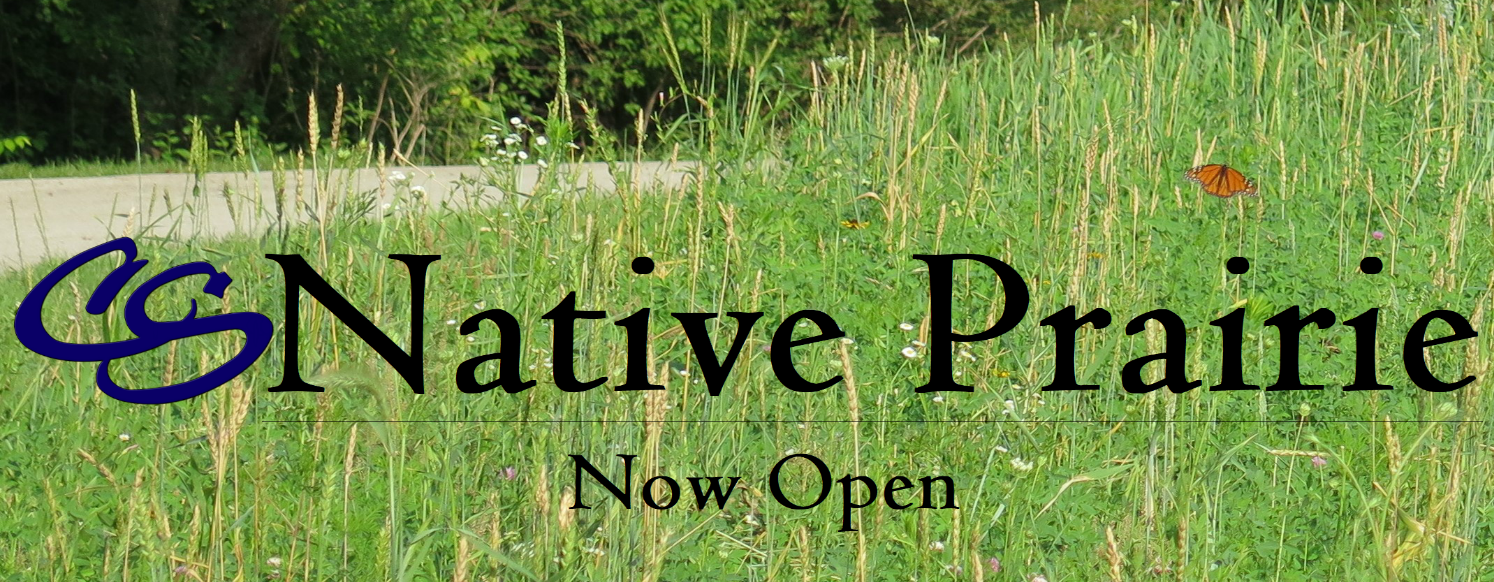 Native Prairie header