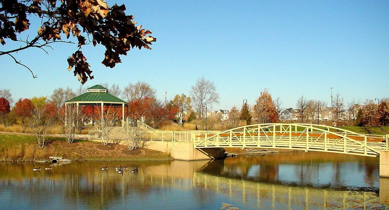 (1278)(690) - Fall TC Bridge