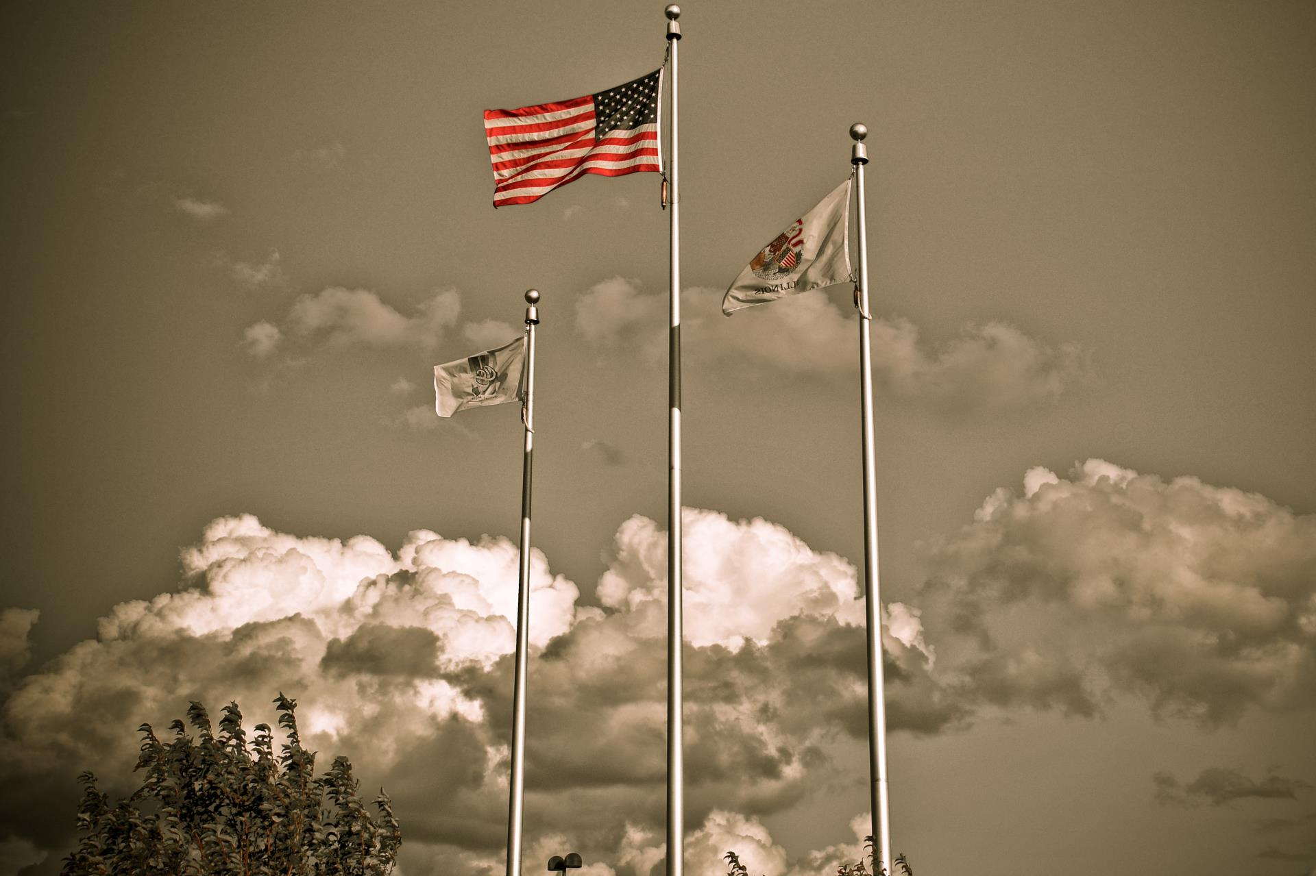 Sepia Flags